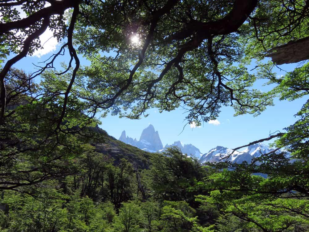Argentine 2015 - El Chalten - Laguna de los Tres ©Etpourtantelletourne.fr
