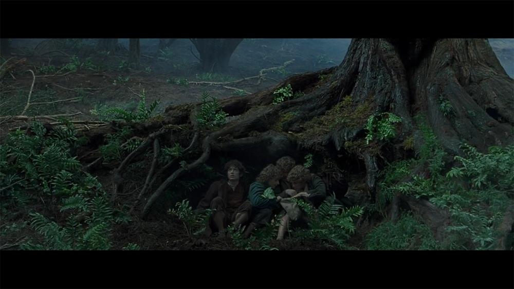 """- copie d'écran tirée du film """"Le Seigneur des anneaux : la communauté de l'anneau"""" de Peter Jackson / New Line Cinema"""