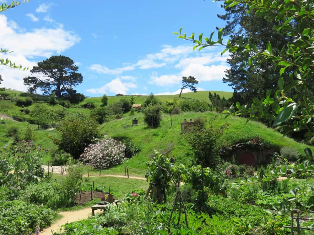 Hobbiton, Nouvelle-Zelande, Lieux tournage Seigneur des Anneaux 2016 ©Etpourtantelletourne.fr