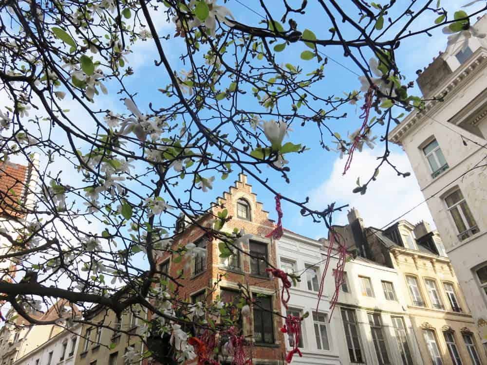 Bruxelles printemps 2016 ©Etpourtantelletourne.fr