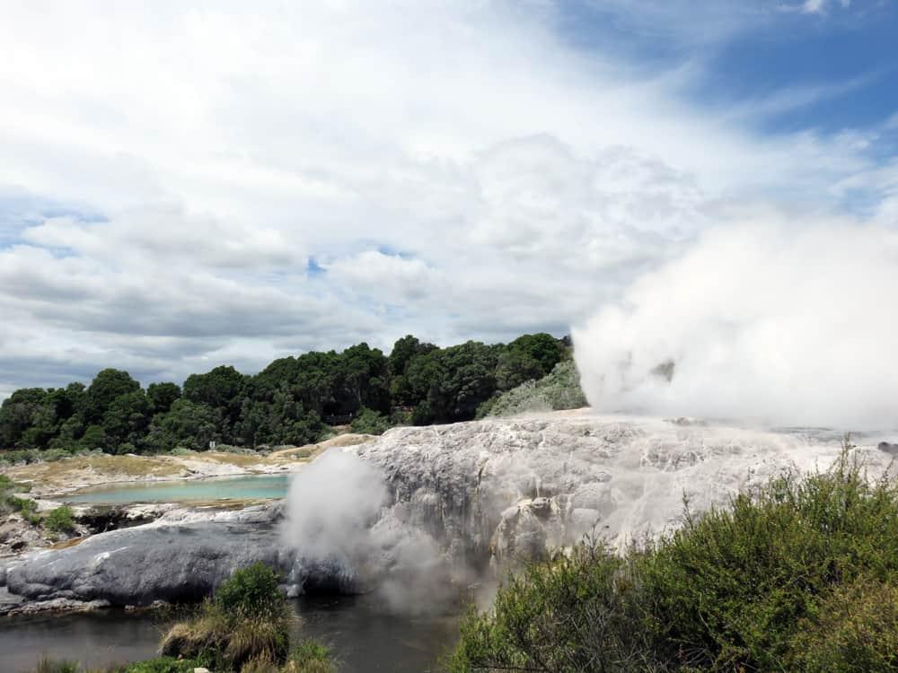 Nouvelle-Zélande Rotorua Te Puia 2016 ©Etpourtantelletourne.fr