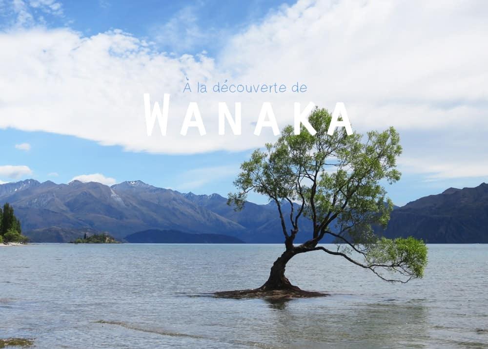 Nouvelle Zélande Wanaka 2016 ©Etpourtantelletourne.fr