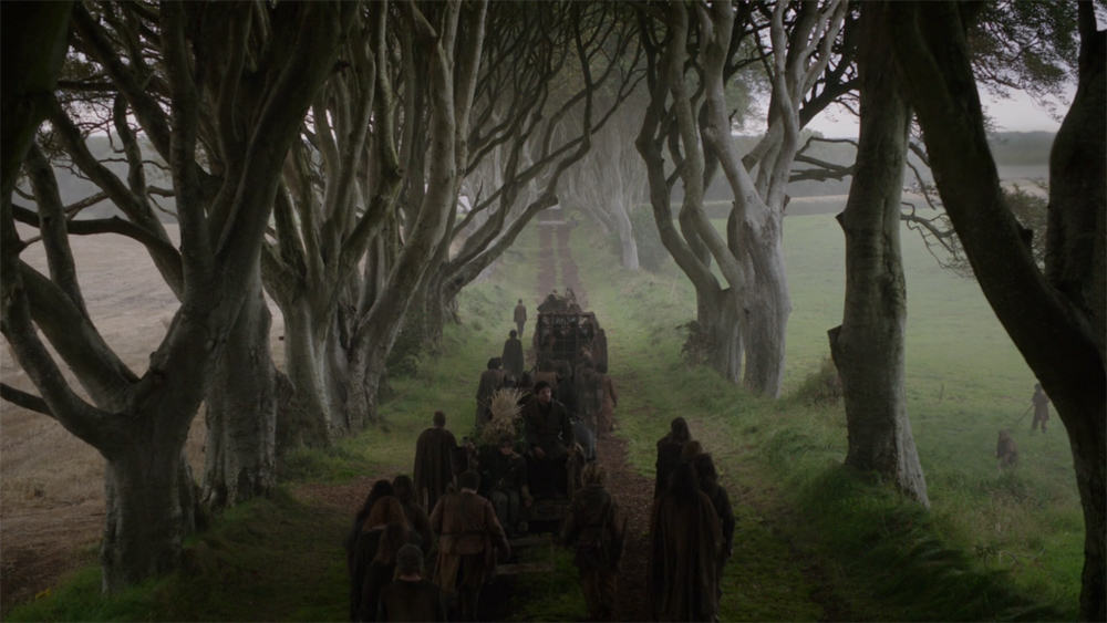 Itinéraire sur les lieux de tournage de Game of Thrones en Irlande du Nord - The Dark Hedges - la route royale ©HBO