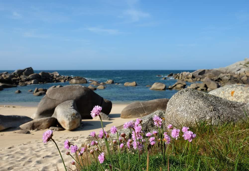 Plouescat côte Finistère Nord rocher tortue ©Etpourtantelletourne.fr