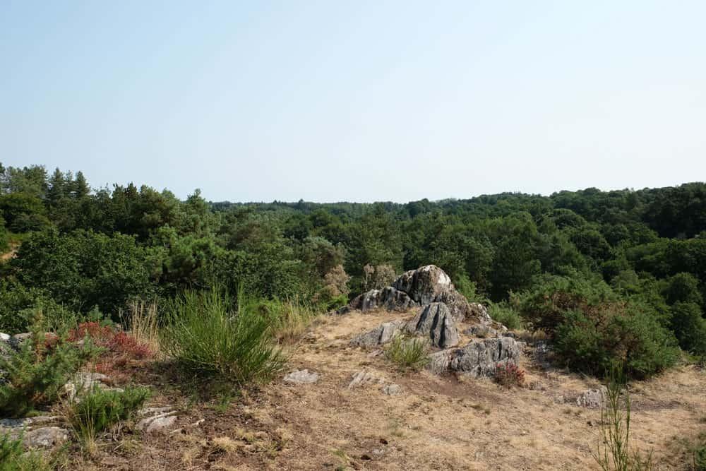 Idées de randonnées près de Rennes : la Vallée du Canut ©Etpourtantelletourne.fr