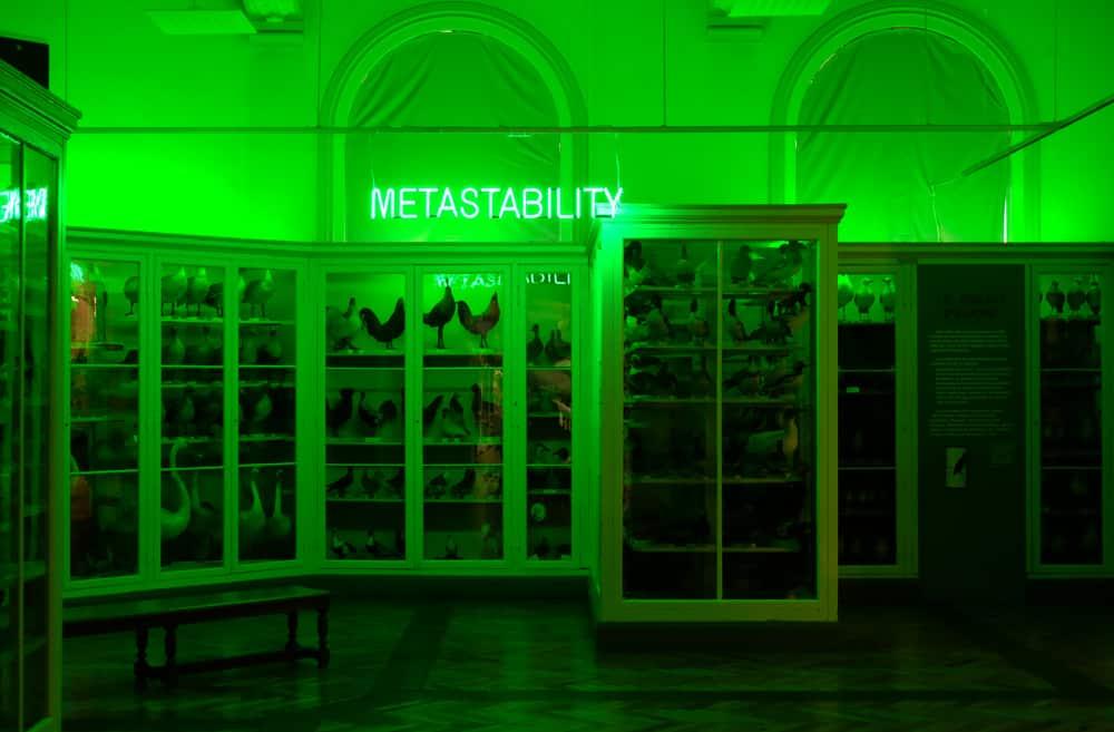 Visite de Lille en famille : le Musée d'histoire naturelle  ©Etpourtantelletourne.fr