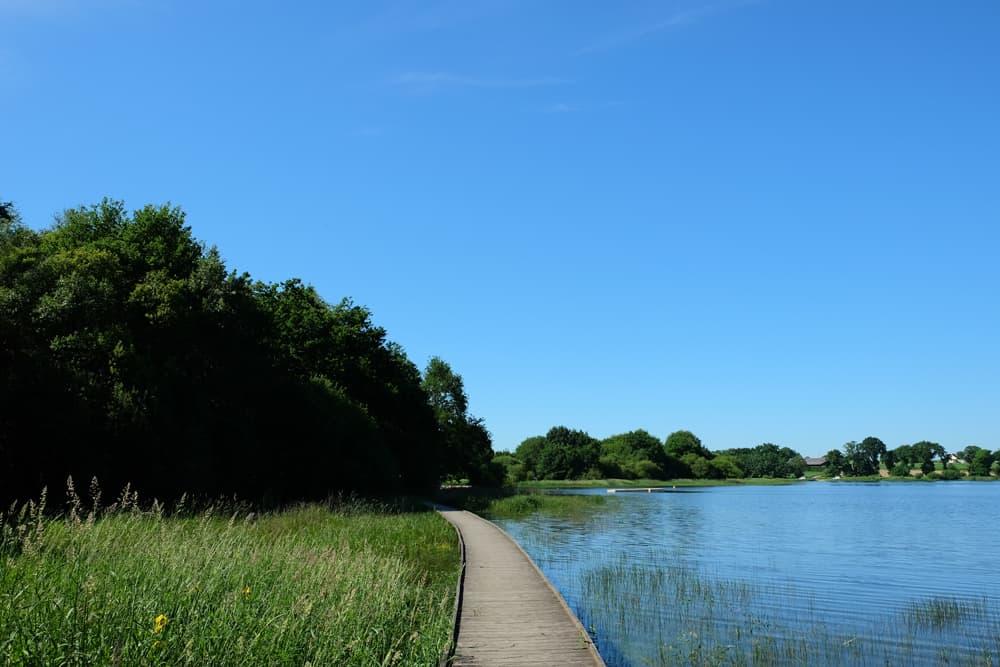 Randonnée autour de l'étang de Boulet en Ille-et-Vilaine ©Etpourtantelletourne.fr