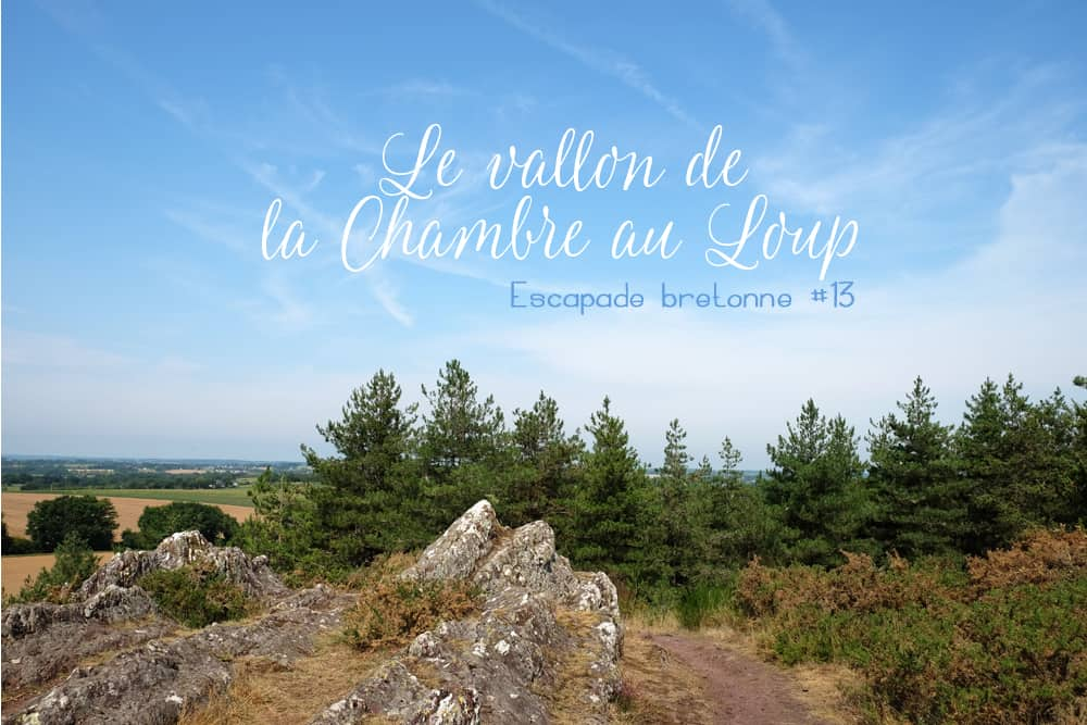 Randonnée le Vallon de la Chambre au Loup à Iffendic ©Etpourtantelletourne.fr