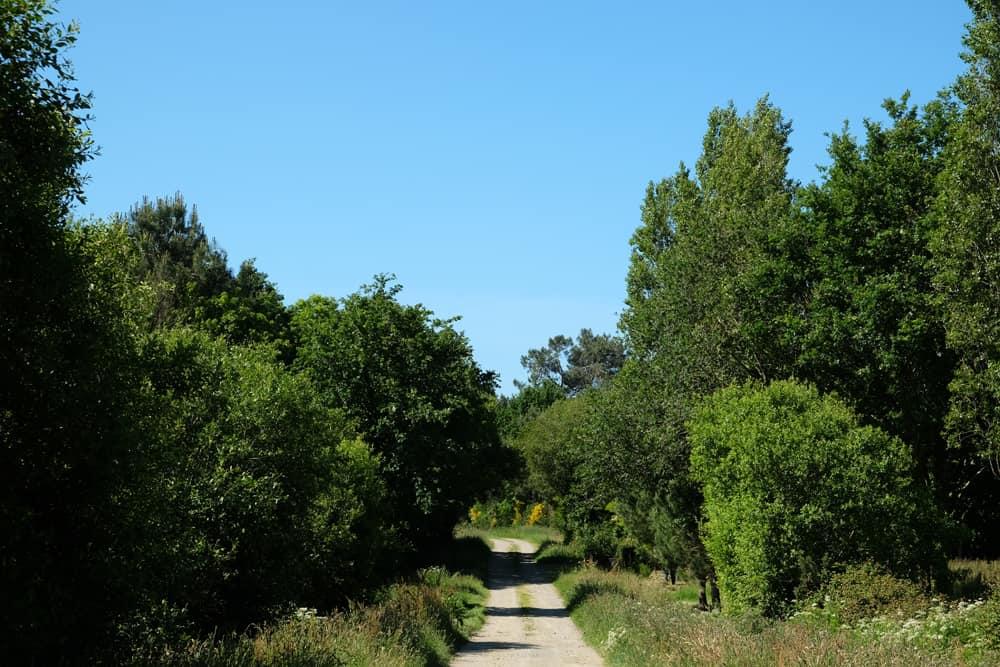 Randonnée en Brière, entre chaumières et marais ©Etpourtantelletourne.fr